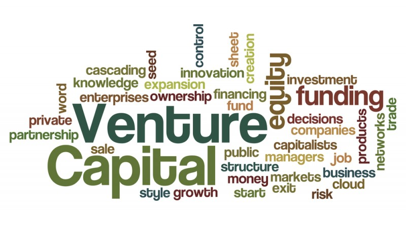 Company-Stage-and-Capitalization